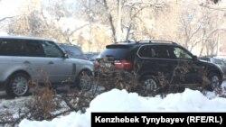 Қар, қыс айы. Алматы, 5 желтоқсан 2012 жыл. (Көрнекті сурет).