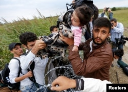 A Syrian migrant hands a small child to another migrant over the Hungarian-Serbian border fence, as they cross into Hungary near Roszke on August 26.