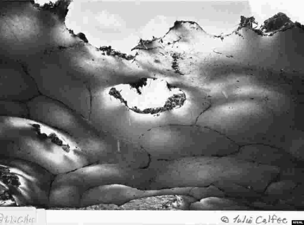 The Last Song Of A Glacier #23