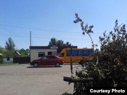 Повалені буревієм дерева на узбіччі дороги Донецьк – Луганськ