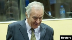 Ratko Mladic attends his trial in The Hague on May 16.