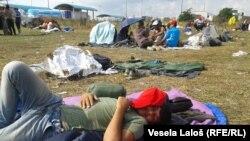 این پناهجویان خواهان باز شدن سرحدات سربیا و هنگری هستند.