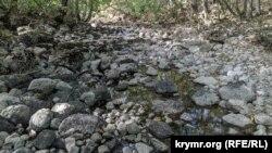Русло почти полностью пересохшей реки Узунджа в Байдарской долине под Севастополем, сентябрь 2020 года