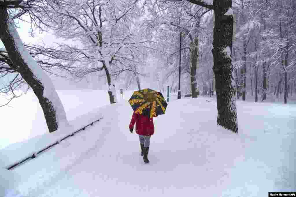 A woman walks through Moscow's Botanical Garden during heavy snowfall on February 4. (AFP/Maxim Marmur)