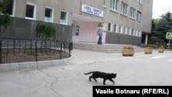La deschiderea unei secții de vot din Chișinău