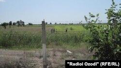 Узбекско-таджикская граница в Согдийской области.