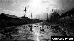 Чиләбе өлкәсе Мөслим авылының Карл Маркс урамы (Роберт Кнот рәсемнәре)