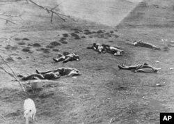 Білий пес біля тіл загиблих у запеклому бою бійців «Карпатської Січі», неподалік Хуста, 16 березня 1939 року