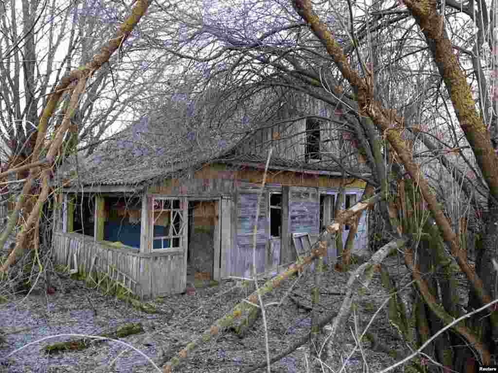A ruined house is seen in the abandoned village of Vorotets, near the 30-kilometer exclusion zone around the Chornobyl nuclear reactor on March 17. Belarus, Ukraine and Russia will mark the 25th anniversary of the nuclear reactor explosion in Chornobyl, the place where the world's worst civil nuclear accident took place, on April 26. Photo by Vasily Fedosenko for Reuters
