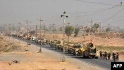 Іракські війська входять у місто Аш-Ширкат за 80 кілометрів на південь від Мосула, щойно визволене ними від ісламістів, фото 22 вересня 2016 року