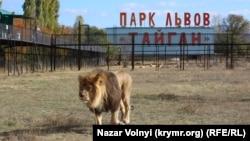 Парк левів «Тайган»