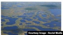 Болота озера Нумто, где обитают редкие виды птиц