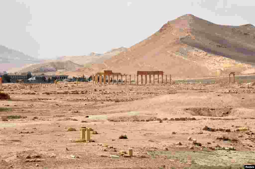 Вид на Пальмиру. 27 марта 2016 года.