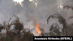 Локализованный пожар, Нижегородская область