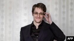 Если к власти в Исландии придет Пиратская Партия, Эдвард Сноуден может рассчитывать на исландский паспорт
