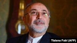 Али Акбар Салехи, глава Организации по атомной энергии Ирана.
