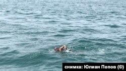 Александър Попов по време на преплуването на Ламанша