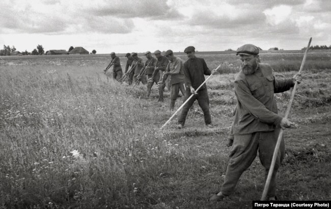 Сяляне косяць траву ў лузе каля рэчкі, вёска Зарытава, 1960-я гады
