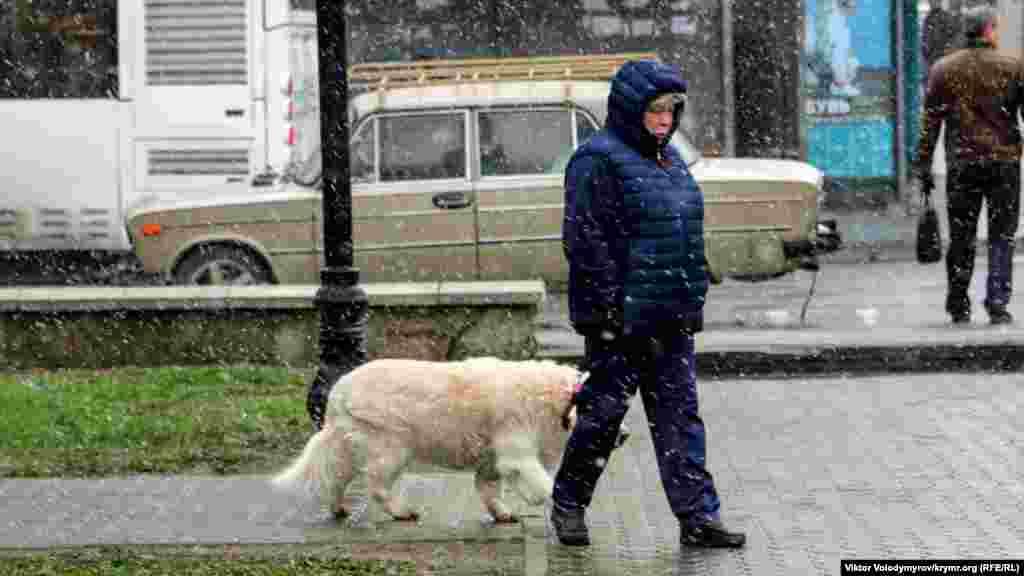 Жінка з собакою на прогулянці в парку