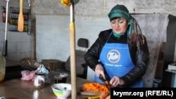 участница акции по гражданской блокаде Крыма Амина Аметова