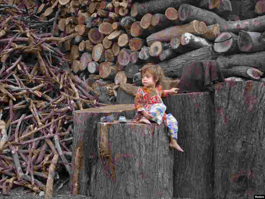 Masooma, a 3-year-old Pashtun girl, sits on a wooden log at a timber yard in Quetta, Pakistan. (Photo by Naseer Ahmed for Reuters)