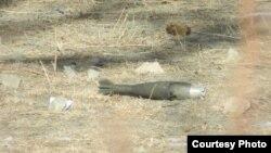 11 январь куни қирғиз-тожик чегарасидаги отишмадан сўнг топилган қурол.