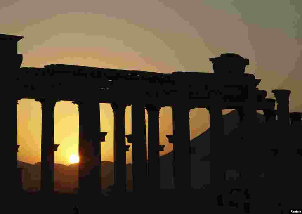Захід сонця у Пальмірі. Листопад 2010 року