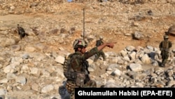 افغان ځواکونه د عملیاتو پرمهال. ارشيف