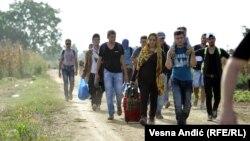 Хорватияны көздөй бараткан бозгундар. 17-сентябрь