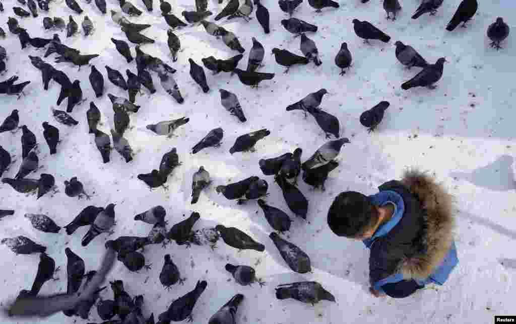 A boy feeds pigeons in a park in Almaty, Kazakhstan. (Reuters/Shamil Zhumatov)