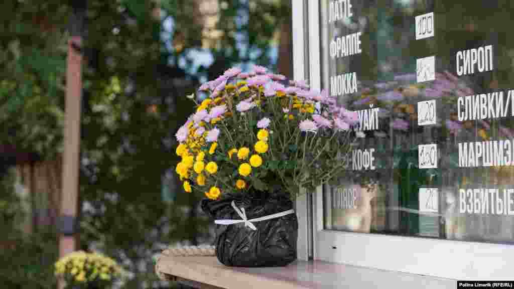 Осінні барви в квітковому горщику
