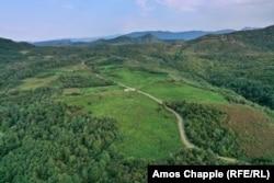 Возрожденная чайная плантация (светло-зеленое поле в центре) рядом с Кутаиси. Большая часть того, что окружает эти светло-зеленые посадки, – это заросшие чайные кусты