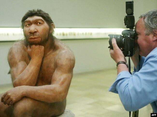 Реконструкция предположительного внешнего вида неандертальцев
