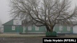 Будынак амелянецкай школы