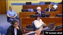 Suđenje Radovanu Karadžiću, 23. veljače 2011