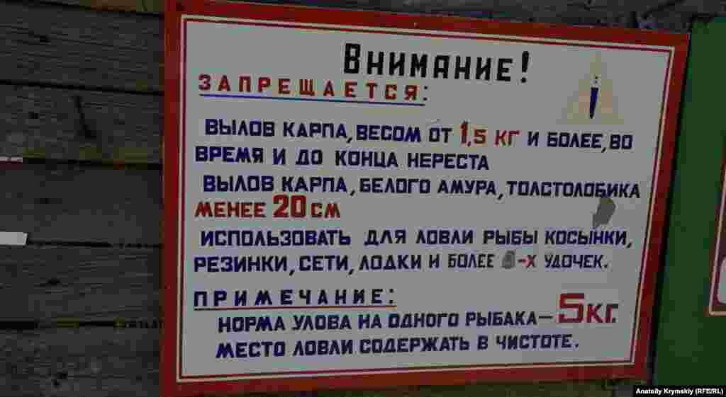 Порыбачить на сельском пруду с указанными ограничениями можно за тысячу рублей (420 гривен) в сутки