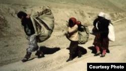 1 миллион 200 миң адам коңшу өлкөлөрдөн баш паанек тапкан