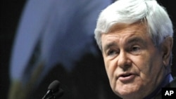 Former speaker of the U.S. House of Representatives and presidential hopeful Newt Gingrich