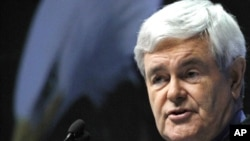 Former speaker of the U.S. House of Representatives Newt Gingrich
