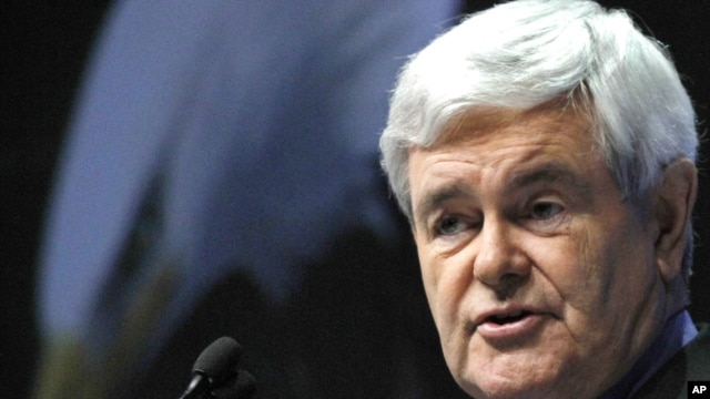 Former speaker of the House of Representatives Newt Gingrich.