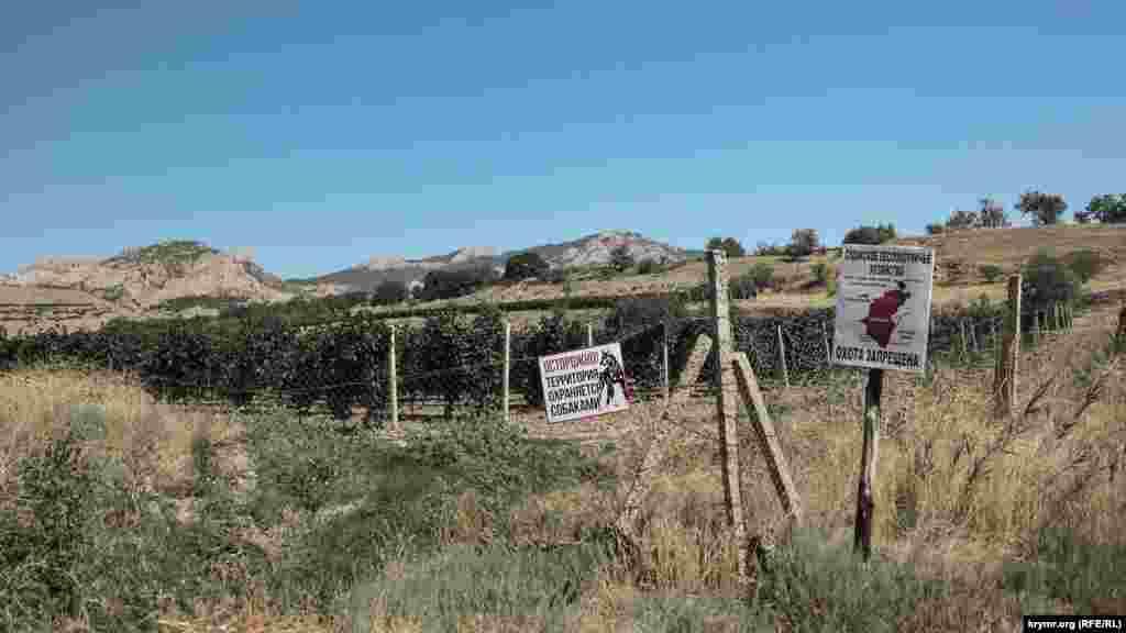 Остатки большого винсовхоза. На всякий случай местность охраняется собаками