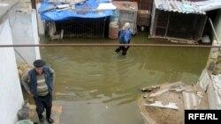 Salyan rayonu, Kür çayı daşdığından evlər su içərisində qalıb, 5 may 2010