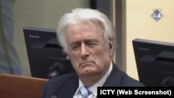 Радован Караджич на оглашении вердикта