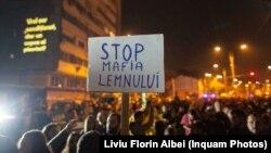 Protest față de tăierea ilegală a pădurilor, în noiembrie anul trecut, organizat la București