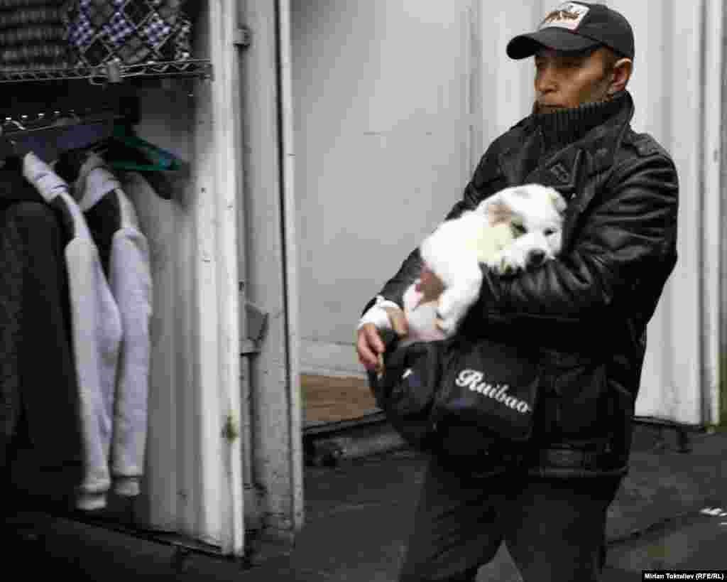 Иногда в проходах можно встретить торговцев щенятами