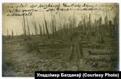 Некалі густы лес пасьля сакавіцкіх баёў 1916 году