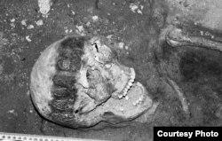 Пахаваньне віленкі канца ХІІІ – пачатку XIV стст. у славянскім галаўным вянцы. Фота Р. Янайціса