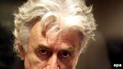 Radovan Karadzic in the UN court in The Hague, 29 Aug 2008
