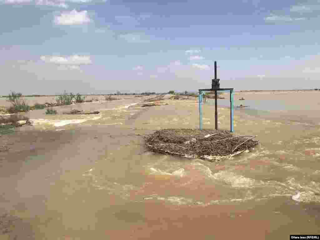 Ресми мәлімет бойынша, 3 мың гектар егістік алқабын су шайып кеткен.
