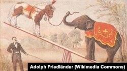 Цирковые животные